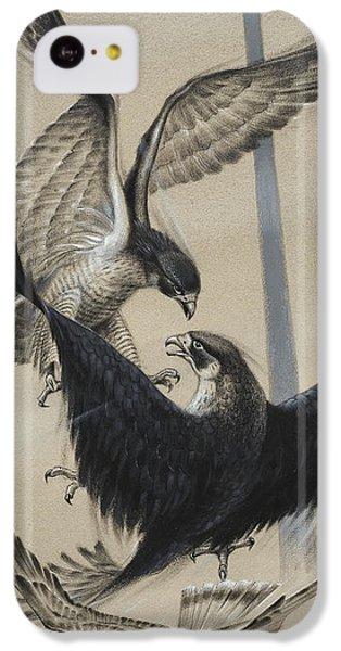 Peregrine Falcon And Kestrel IPhone 5c Case