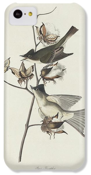 Flycatcher iPhone 5c Case - Pewit Flycatcher by Dreyer Wildlife Print Collections