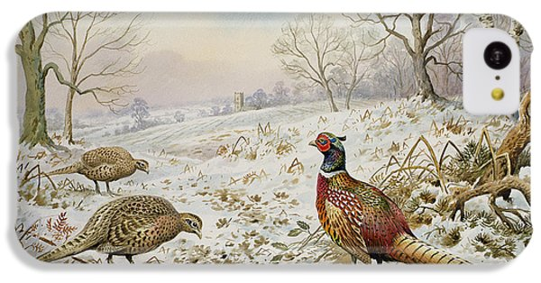 Pheasant And Partridges In A Snowy Landscape IPhone 5c Case