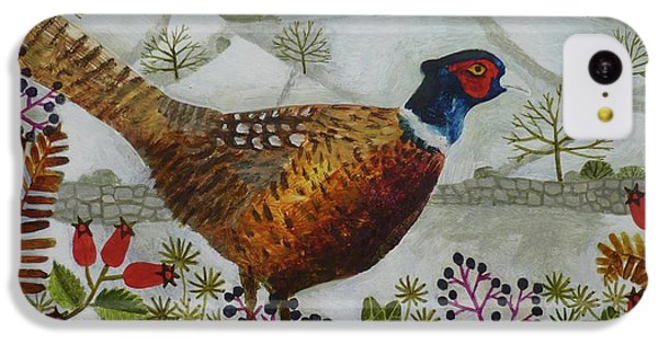 Pheasant And Snowy Hillside IPhone 5c Case