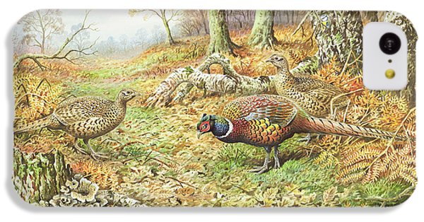 Pheasants With Blue Tits IPhone 5c Case