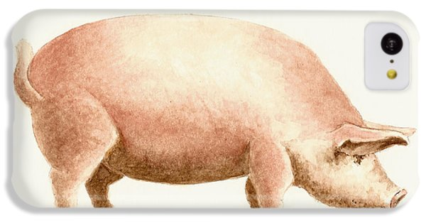 Pig IPhone 5c Case