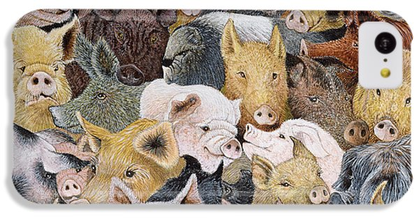 Pigs Galore IPhone 5c Case by Pat Scott