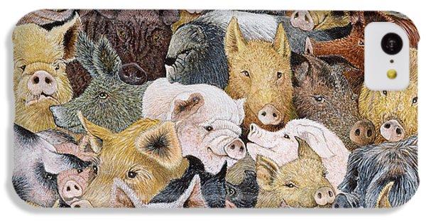 Pigs Galore IPhone 5c Case by Pat Scott