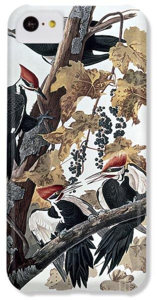 Woodpecker iPhone 5c Case - Pileated Woodpeckers by John James Audubon