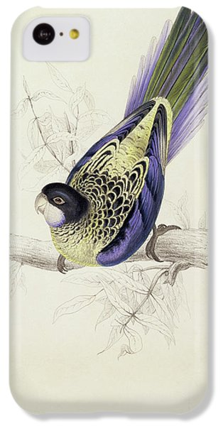 Platycercus Brownii, Or Browns Parakeet IPhone 5c Case