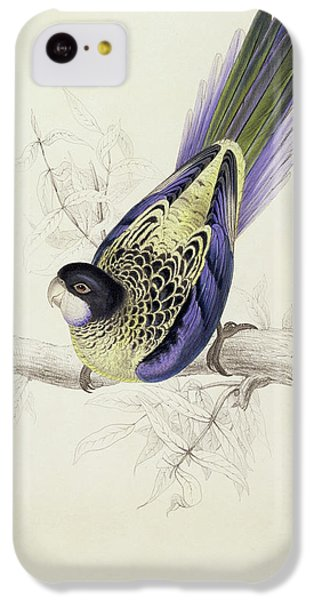 Platycercus Brownii, Or Browns Parakeet IPhone 5c Case by Edward Lear