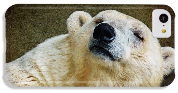 Polar Bear iPhone 5c Case - Polar Bear by Angela Doelling AD DESIGN Photo and PhotoArt