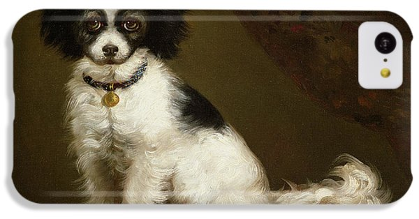 Portrait Of A Spaniel IPhone 5c Case