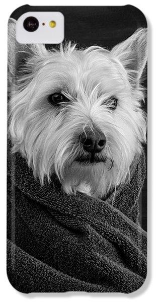 Portrait Of A Westie Dog IPhone 5c Case by Edward Fielding