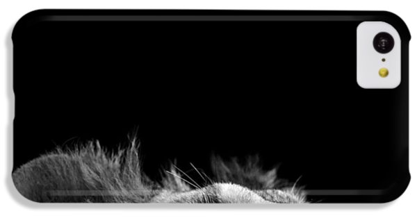 White iPhone 5c Case - Portrait Of Lion In Black And White IIi by Lukas Holas
