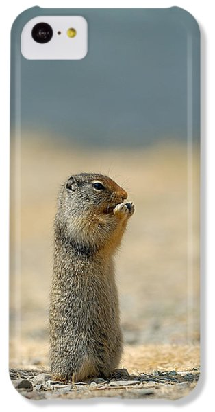 Prairie Dog IPhone 5c Case