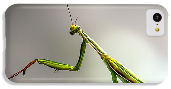 Praying Mantis  IPhone 5c Case