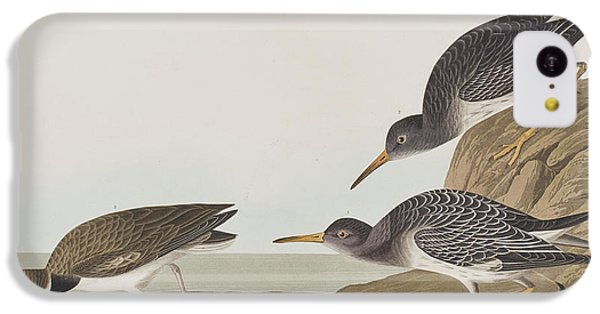 Purple Sandpiper IPhone 5c Case by John James Audubon