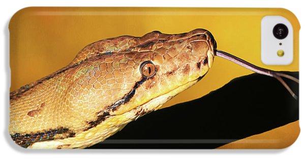 Python IPhone 5c Case