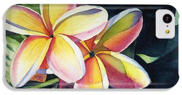 Flowers iPhone 5c Case - Rainbow Plumeria by Marionette Taboniar