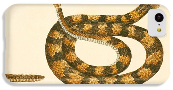 Rattlesnake IPhone 5c Case by Mark Catesby