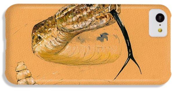 Rattlesnake Painting IPhone 5c Case