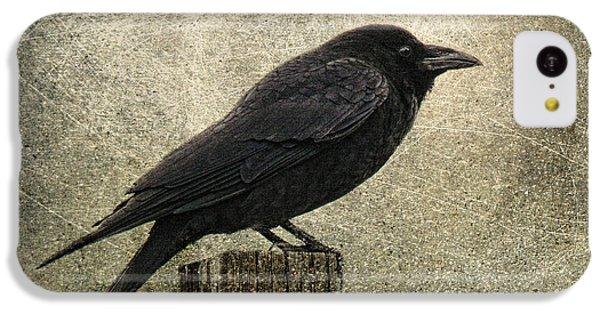 Raven IPhone 5c Case