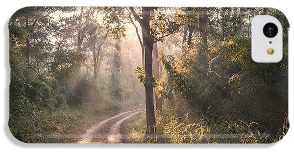Rays Through Jungle IPhone 5c Case by Hitendra SINKAR
