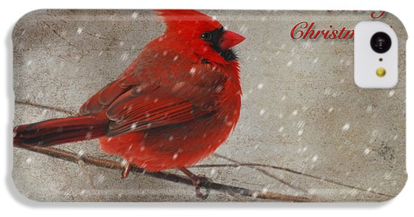 Red Bird In Snow Christmas Card IPhone 5c Case by Lois Bryan