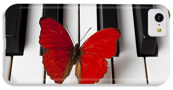 Red Butterfly On Piano Keys IPhone 5c Case