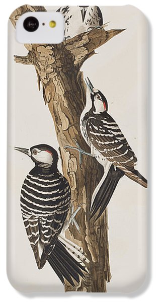 Red-cockaded Woodpecker IPhone 5c Case