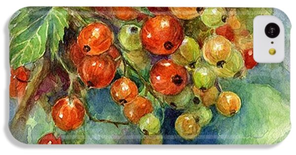 Follow iPhone 5c Case - Red Currants Berries Watercolor by Svetlana Novikova