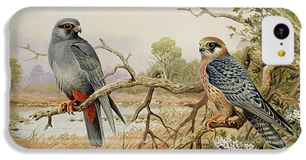 Red-footed Falcons IPhone 5c Case by Carl Donner