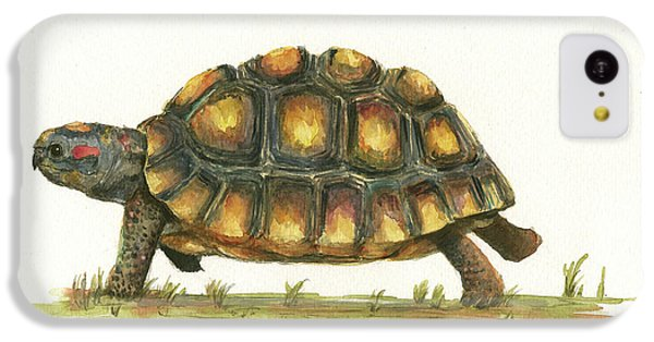 Red Footed Tortoise  IPhone 5c Case by Juan Bosco