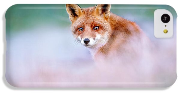 Red Fox In A Mysterious World IPhone 5c Case