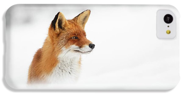 Red Fox Out Of The Blue IPhone 5c Case