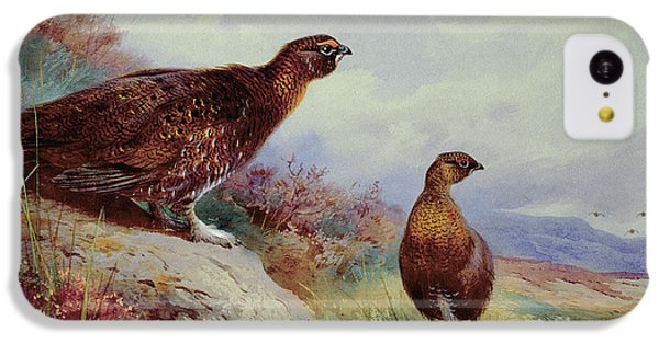 Red Grouse On The Moor, 1917 IPhone 5c Case by Archibald Thorburn