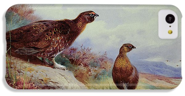 Red Grouse On The Moor, 1917 IPhone 5c Case
