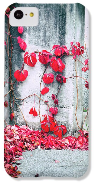 IPhone 5c Case featuring the photograph Red Ivy Leaves by Silvia Ganora