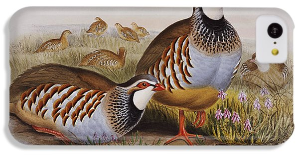 Red-legged Partridges IPhone 5c Case by John Gould