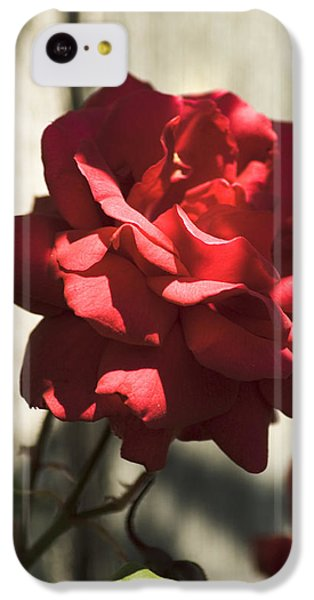 IPhone 5c Case featuring the photograph Red Rose by Yulia Kazansky