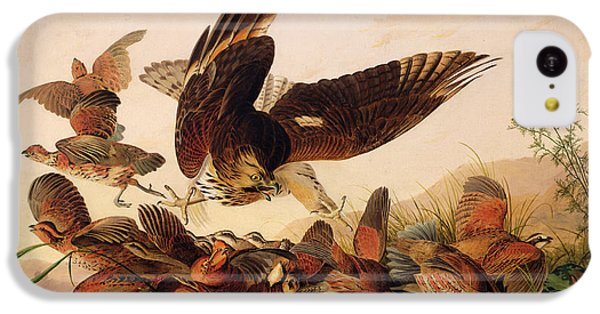 Red Shouldered Hawk Attacking Bobwhite Partridge IPhone 5c Case by John James Audubon