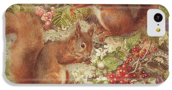 Red Squirrels Gathering Fruits And Nuts IPhone 5c Case by Rosa Jameson