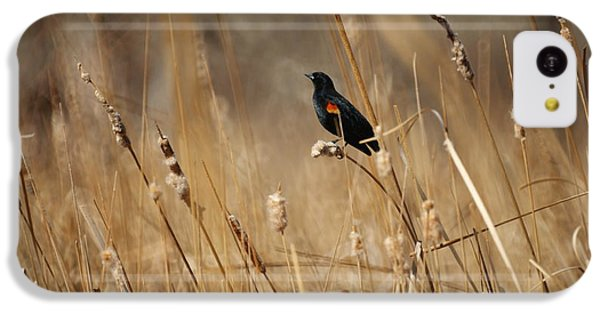 Red Winged Blackbird IPhone 5c Case by Ernie Echols