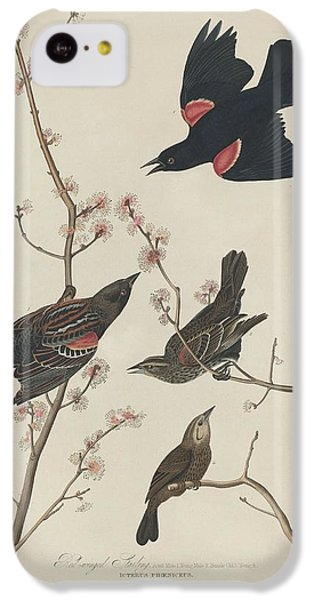 Starlings iPhone 5c Case - Red-winged Starling by Dreyer Wildlife Print Collections