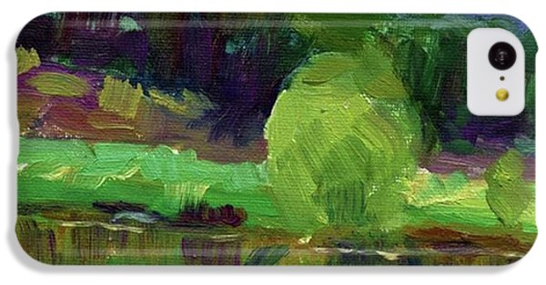 Reflections Painting Study By Svetlana IPhone 5c Case