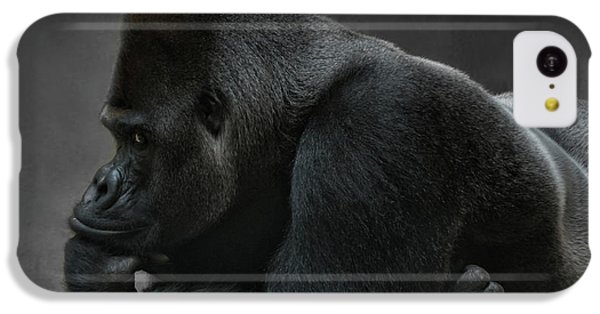 Relaxed Silverback IPhone 5c Case