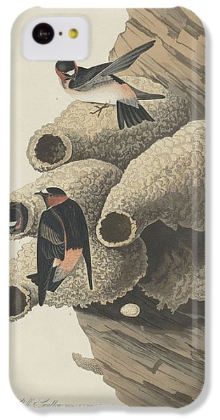 Republican Cliff Swallow IPhone 5c Case by Rob Dreyer