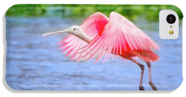 Rise Of The Spoonbill IPhone 5c Case by Mark Andrew Thomas