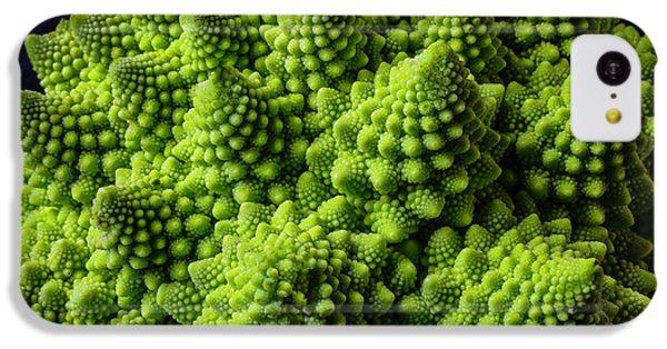 Romanesco Broccoli IPhone 5c Case by Garry Gay