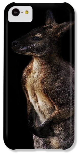Roo IPhone 5c Case by Martin Newman