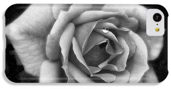 Rose In Mono. #flower #flowers IPhone 5c Case by John Edwards
