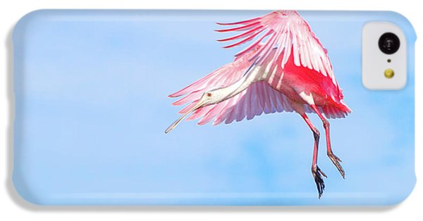 Roseate Spoonbill Final Approach IPhone 5c Case by Mark Andrew Thomas