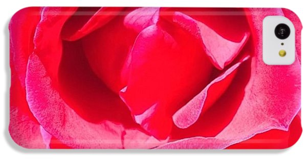 Detail iPhone 5c Case - #roses Are #red ...#violets Are #blue by Shari Warren